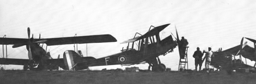 RE8s of the AFC