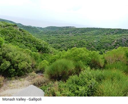 Monash Valley